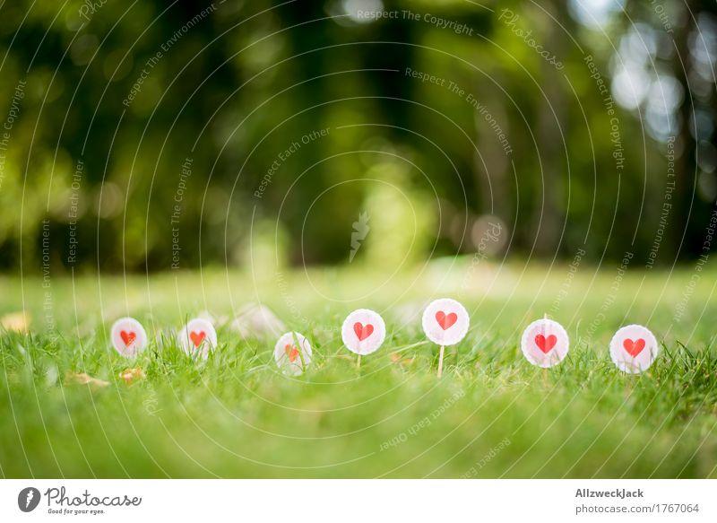 Liebe im Gras Natur Sommer Wiese Zeichen Schilder & Markierungen Herz Grenze Farbfoto Außenaufnahme Nahaufnahme Detailaufnahme Menschenleer Tag