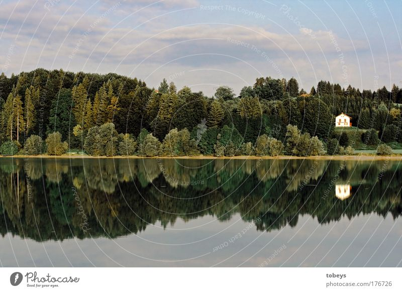 Rente? Natur Sommer Erholung Einsamkeit Landschaft ruhig Wald Glück Freiheit See Wohnung Zufriedenheit Idylle Insel Seeufer Fluss