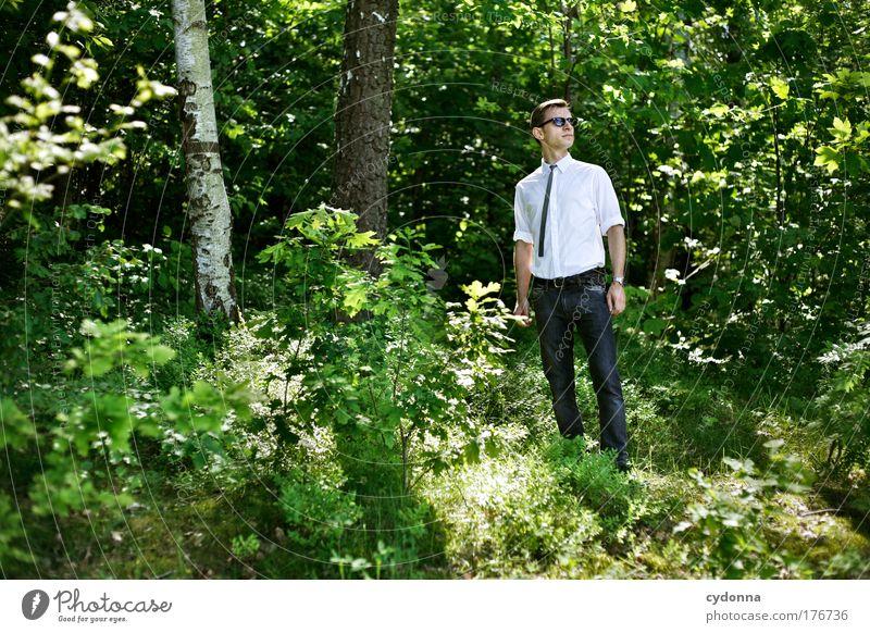 Chic Mensch Mann Natur Jugendliche schön Baum Sommer Erwachsene Wald Leben Umwelt Freiheit Stil träumen Mode Zufriedenheit