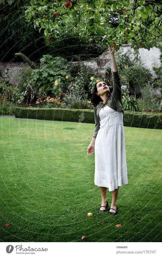 Eva Frau Mensch Natur Jugendliche weiß Baum Pflanze Sommer Blatt kalt Wiese feminin Gras Garten Erwachsene Umwelt