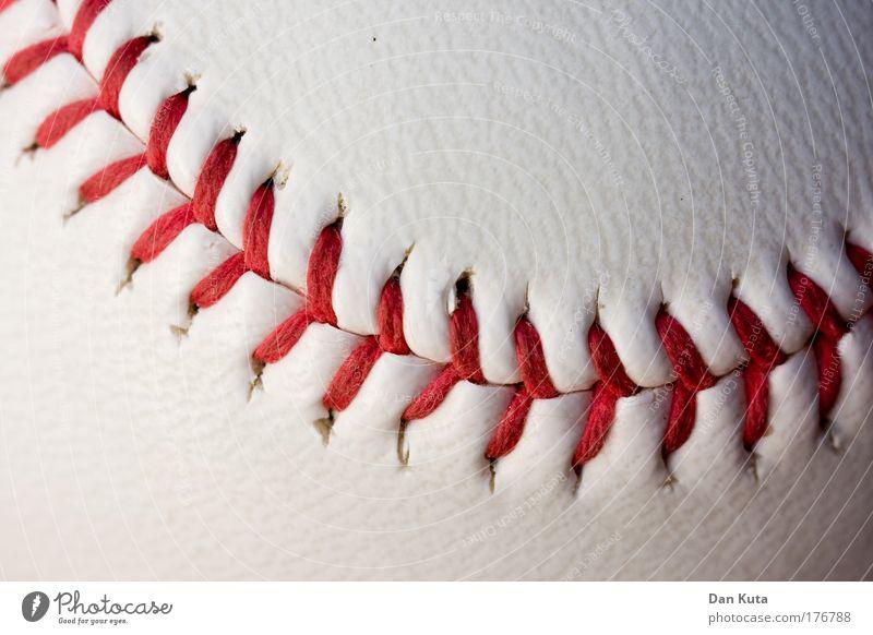 Nah(t)aufnahme Sport Ballsport Baseball Sammlerstück Leder festhalten Spielen authentisch rot weiß Freude Erfolg Leidenschaft Akzeptanz Enttäuschung anstrengen