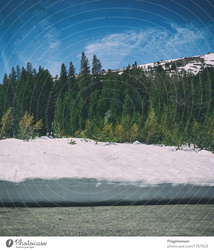 Schneefallgrenze Natur Ferien & Urlaub & Reisen Baum Landschaft Ferne Winter Wald Berge u. Gebirge Umwelt Frühling Freiheit Tourismus Freizeit & Hobby wandern