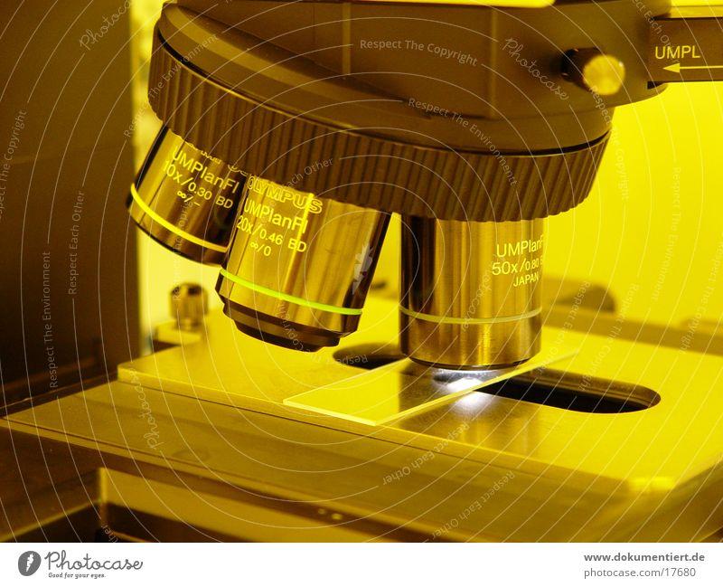 Mikroskop Suche Wissenschaften