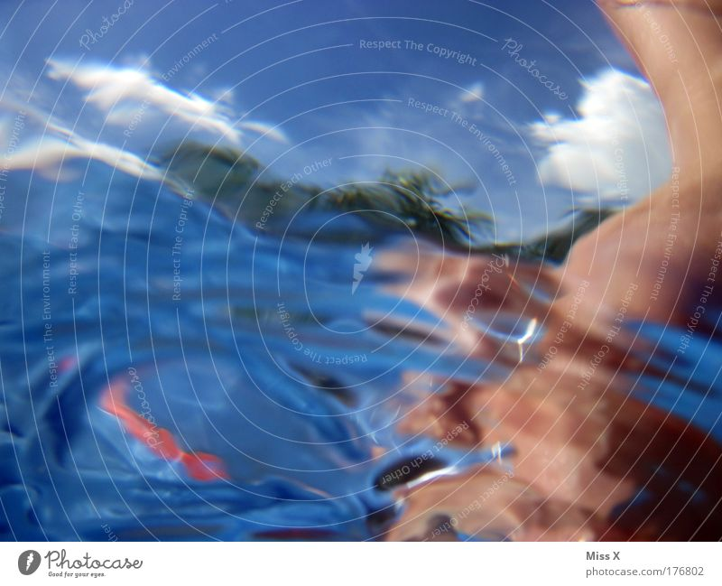 Das ultimative Sommerbild ! ! ! Farbfoto mehrfarbig Außenaufnahme Unterwasseraufnahme Textfreiraum links Textfreiraum oben Textfreiraum unten Textfreiraum Mitte