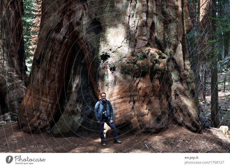 wer sind wir schon... Fotografieren Ferien & Urlaub & Reisen Tourismus Abenteuer Mann Erwachsene 1 Mensch 30-45 Jahre 45-60 Jahre Natur Landschaft Pflanze Baum