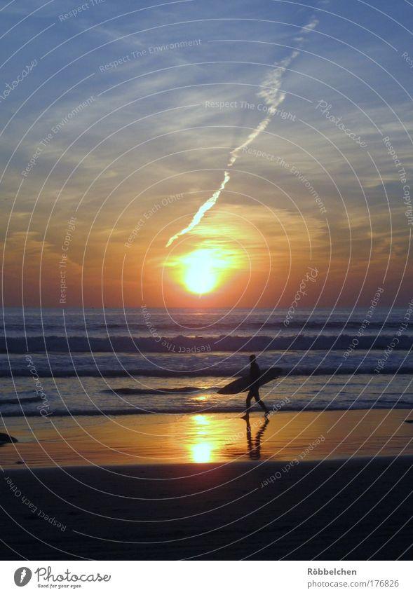 Sunset Surfer Farbfoto Gedeckte Farben Außenaufnahme Dämmerung Sonnenaufgang Sonnenuntergang Freizeit & Hobby Freiheit Strand Meer Wellen Wassersport Surfen