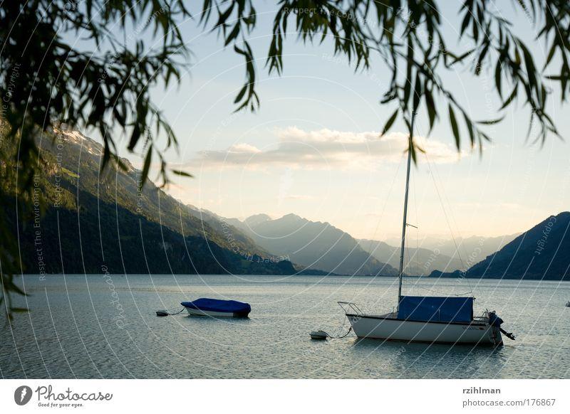 Boote auf dem Brienzersee Farbfoto Außenaufnahme Textfreiraum oben Abend Starke Tiefenschärfe Panorama (Aussicht) Natur Landschaft Wasser Himmel Alpen