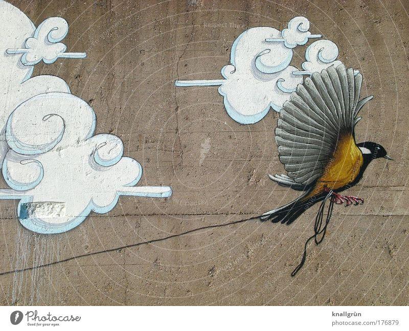 Flieg! weiß schwarz Wolken Tier gelb grau Graffiti braun Vogel Kunst fliegen Beton Hoffnung Flügel Kultur festhalten