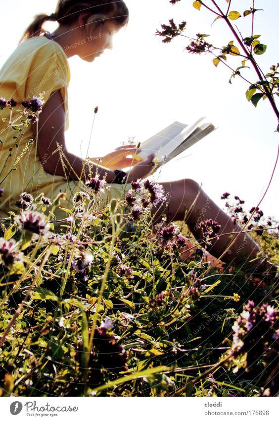 sommergeschichten Mensch Natur Jugendliche Blume Frau ruhig Wiese Gras Zufriedenheit Buch Erwachsene lesen Medien Pflanze Gelassenheit Schönes Wetter