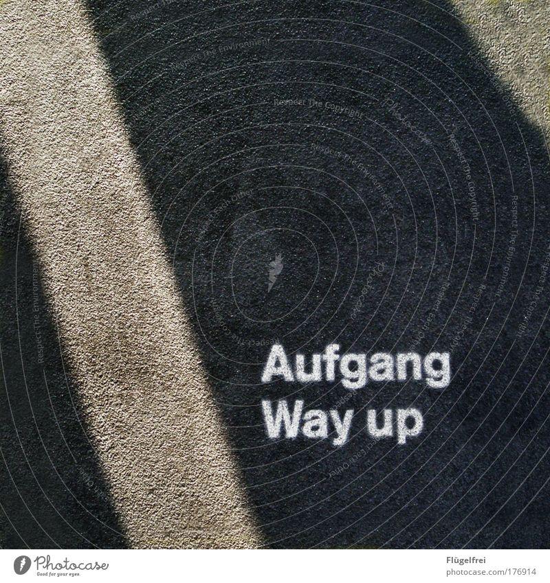 Zur Chefetage bitte hier entlang! :D Sonne Straße Wege & Pfade Glück Treppe Erfolg hoch Schriftzeichen Boden Asphalt Pfeil Neigung Typographie Dynamik kämpfen