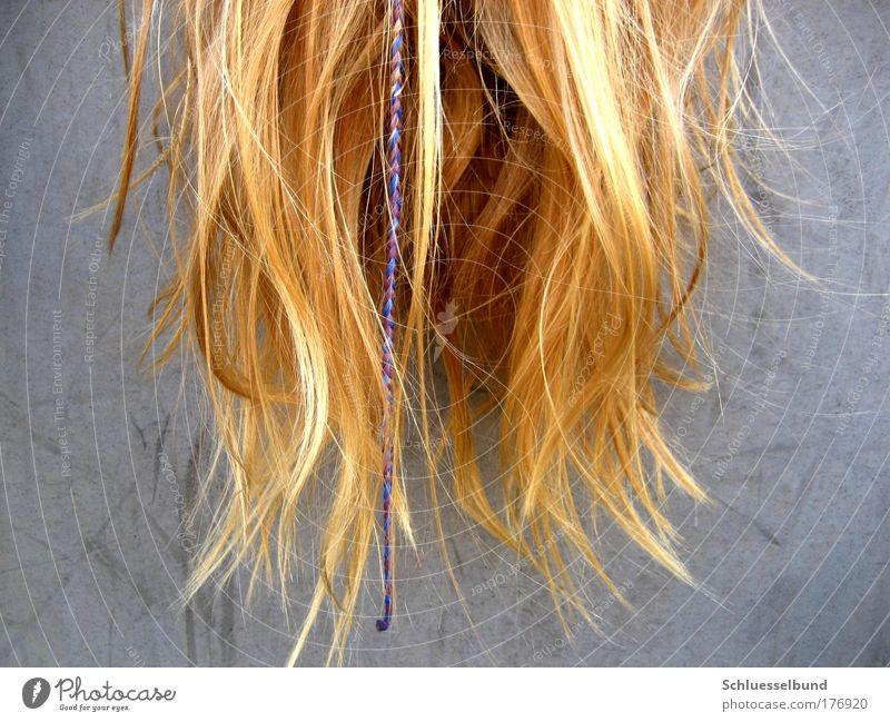falling hair Mensch weiß schön Erholung feminin grau Haare & Frisuren Linie hell blond gold glänzend dünn lang hängen eng