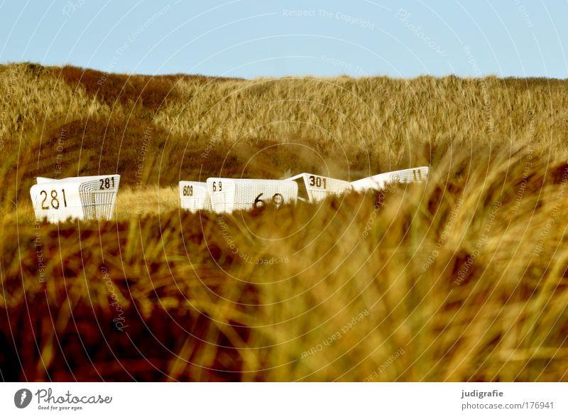 In den Dünen Natur Himmel Meer Strand Ferien & Urlaub & Reisen ruhig Erholung Gras Landschaft Küste Insel Tourismus Ziffern & Zahlen Stranddüne Nordsee Strandkorb