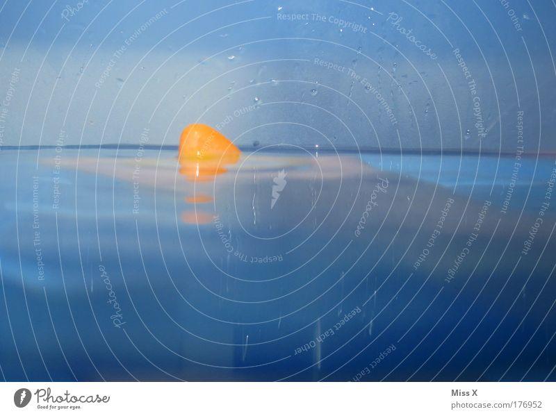 der weiße öööööh orange Hai Wasser blau Freude Meer Spielen Angst Wassertropfen Schwimmen & Baden gefährlich bedrohlich Schwimmbad Todesangst Badewanne Haifisch