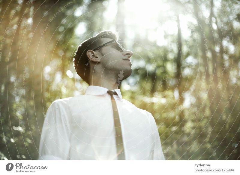 Alles ist erleuchtet Mensch Mann Natur Jugendliche schön Sonne Erwachsene Wald Erholung Leben Umwelt Gefühle Freiheit Stil träumen Mode