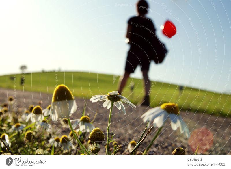 Der Berg ruft [FR 15|08|09] Mensch Natur Pflanze Freude ruhig Schwarzwald Erholung Umwelt Leben Landschaft Berge u. Gebirge Bewegung Blume Gesundheit