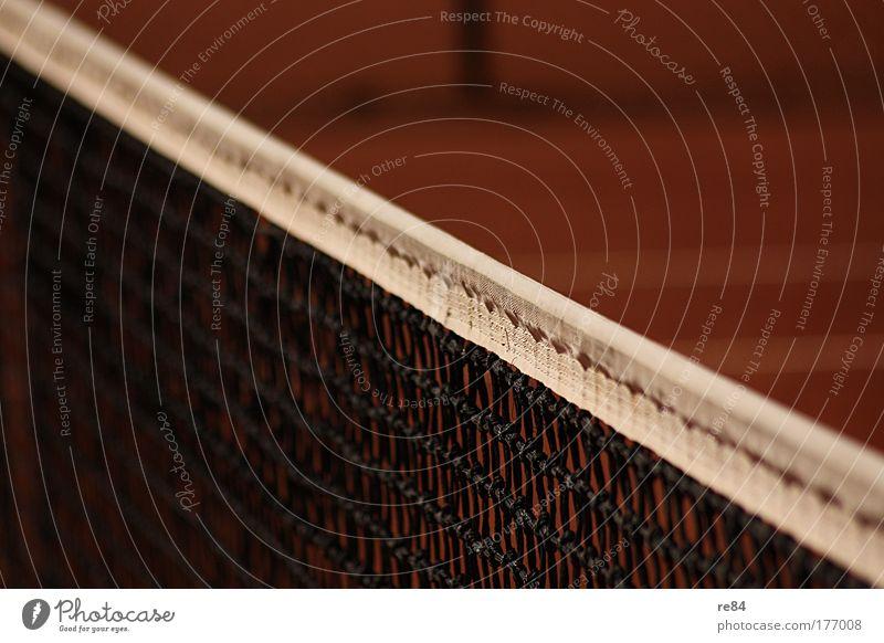 Die Grenze zwischen gut und böse weiß rot schwarz Sport Wärme Platz Erfolg Netzwerk Streifen Schnur Ball Netz Grenze Sportveranstaltung Tennisnetz Begeisterung