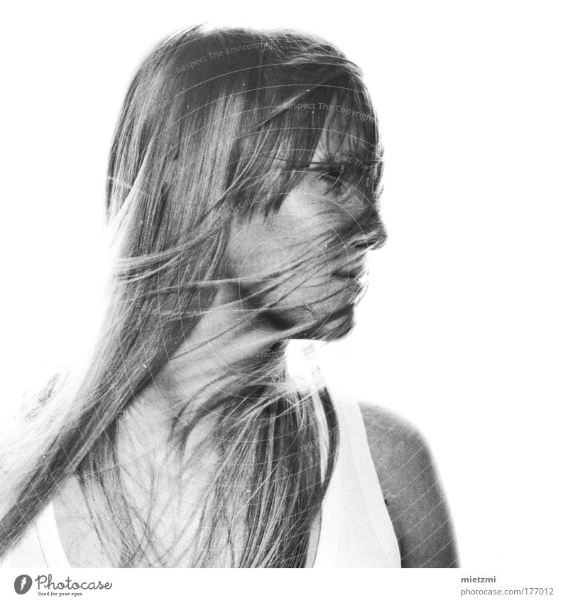 m i l k b a s e d Jugendliche Ferne feminin Gefühle Haare & Frisuren träumen Kopf Erwachsene Behaarung Fernweh langhaarig High Key Mittelformat luftig Schwarzweißfoto weißhaarig