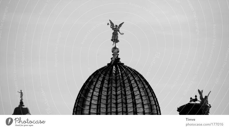 Pheme alt schön Architektur Kunst Tourismus ästhetisch Engel Turm Kultur Bauwerk Dresden Skyline historisch Statue Sehenswürdigkeit Hauptstadt