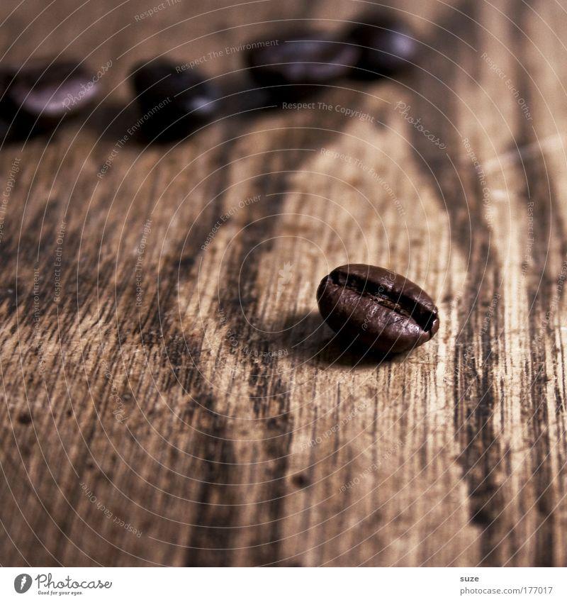 Zack, die Bohne Holz braun natürlich Lebensmittel ästhetisch Kaffee einfach trocken Stillleben Espresso Maserung Mahlzeit aromatisch Latte Macchiato
