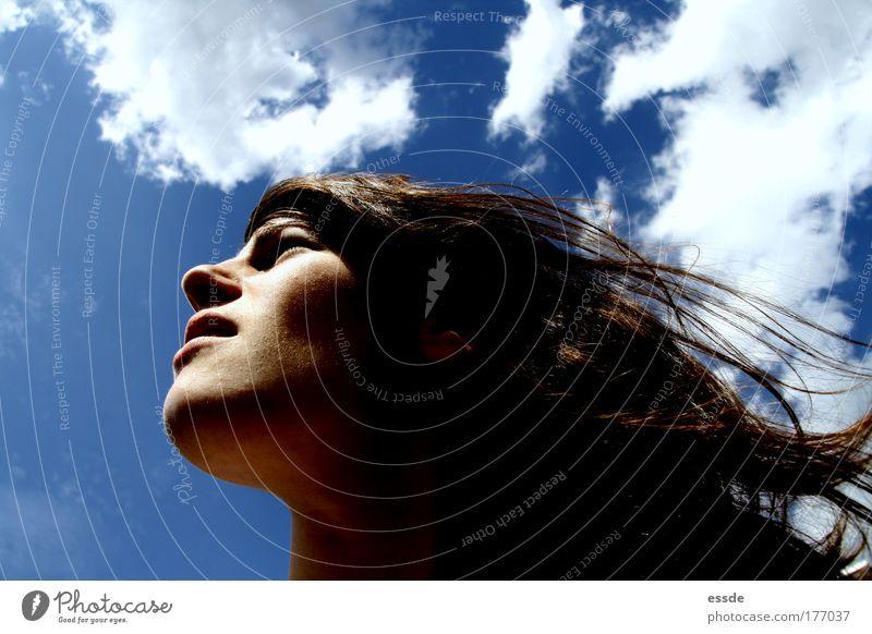 gut gegen nordwind Mensch Jugendliche blau Sonne Sommer Wolken Gesicht feminin Freiheit Kopf Bewegung Haare & Frisuren träumen Erwachsene braun