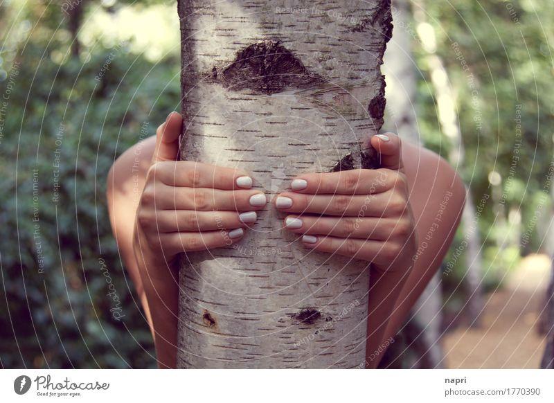 Komm, wir gehen in den Birkenwald... feminin Junge Frau Jugendliche Hand Fingernagel 1 Mensch 13-18 Jahre 18-30 Jahre Erwachsene Baum Park Wald berühren