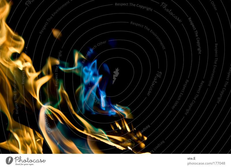 flamme, bunt grün blau Sommer gelb dunkel kalt Erholung Wärme hell glänzend Energie Feuer nah bedrohlich Kitsch Schutz