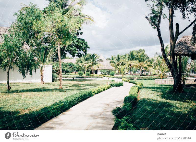 Zanzibar I Park Menschenleer Erholung Tourismus Ferien & Urlaub & Reisen Urlaubsfoto Urlaubsstimmung Sansibar Tansania Afrika Urlaubsort Resort Farbfoto