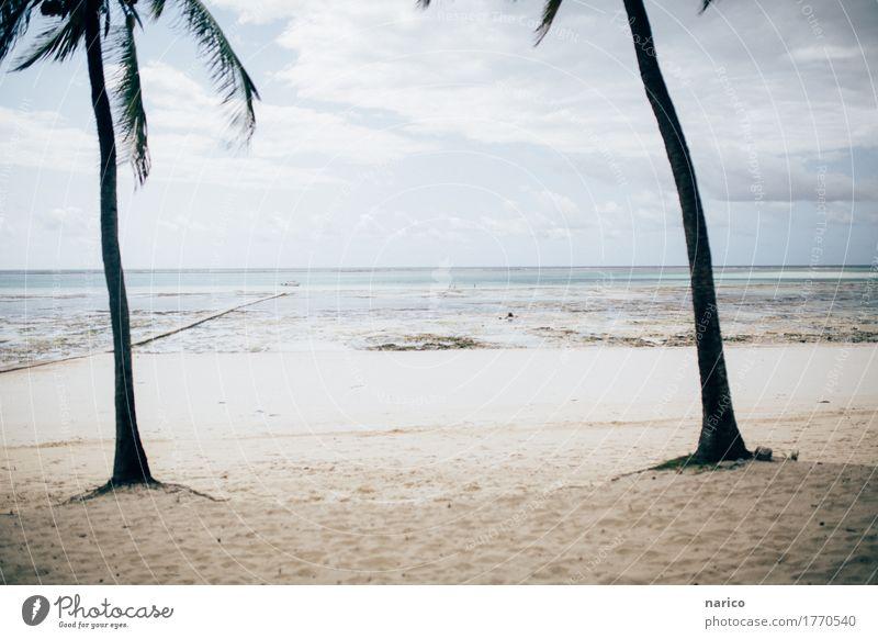 Zanzibar IV Umwelt Natur Landschaft Sand Strand Meer Insel Sansibar Menschenleer Erholung Ferien & Urlaub & Reisen Urlaubsfoto Urlaubsstimmung Tansania Afrika