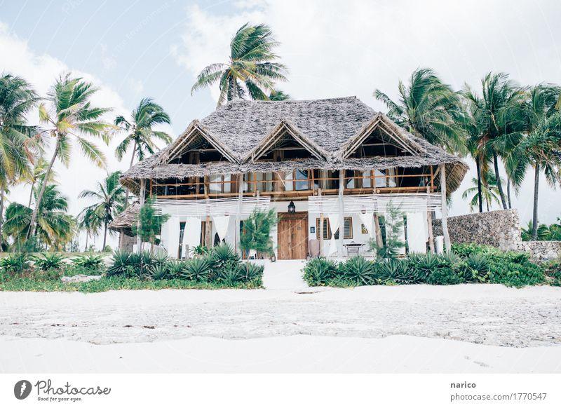 Zanzibar V Lifestyle Reichtum elegant Stil Design Wohlgefühl Erholung ruhig Häusliches Leben Wohnung Haus Traumhaus Natur Sommer Wind Palme Strand Gebäude
