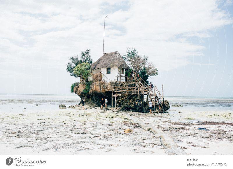 Zanzibar VI Natur Landschaft Sand Wasser Sommer Strand Meer Haus Hütte Sehenswürdigkeit niedlich schön ruhig Tourismus Ferien & Urlaub & Reisen Urlaubsfoto