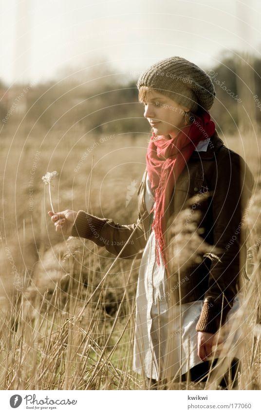 lebenszeichen Mensch Natur Jugendliche Pflanze Landschaft Erwachsene Gesicht Erholung Umwelt feminin Junge Frau Herbst Gras Kopf Traurigkeit Denken