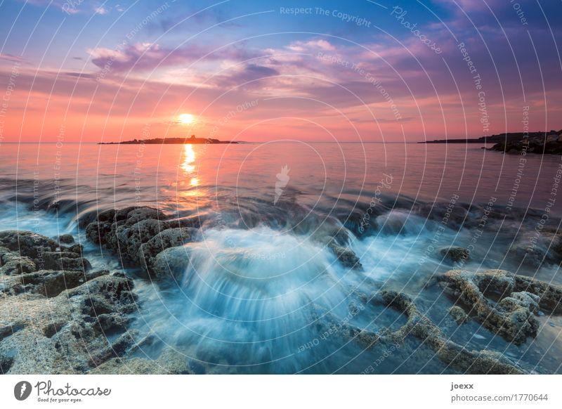 Etwas länger bleiben Sommer Meer Landschaft Wasser Himmel Sonnenaufgang Sonnenuntergang Schönes Wetter schön blau orange Romantik ruhig Fernweh Horizont Idylle