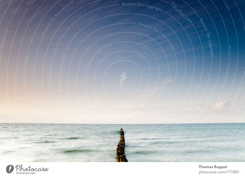 Geteilt Farbfoto Außenaufnahme Menschenleer Textfreiraum oben Textfreiraum Mitte Abend Dämmerung Totale Panorama (Aussicht) Weitwinkel Strand Meer Wellen Umwelt