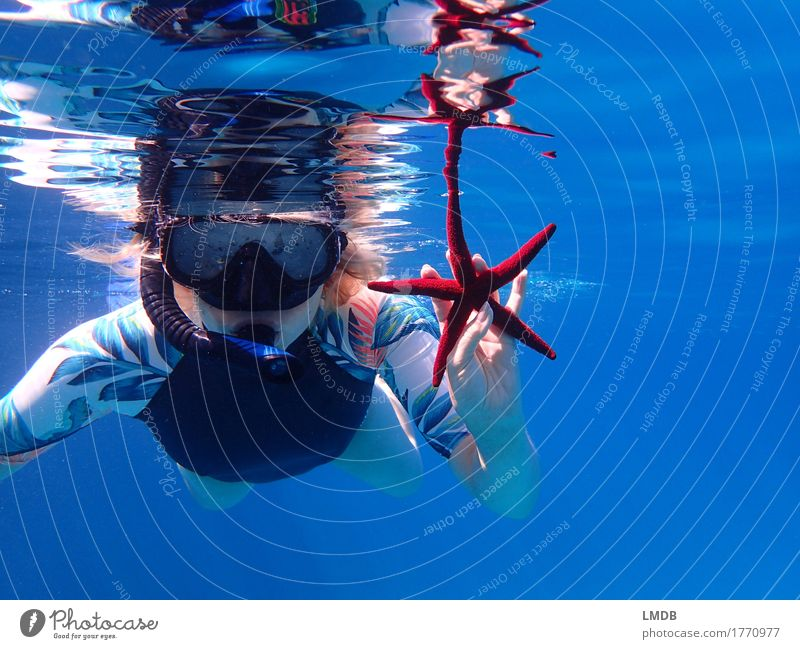 *Sternensammler* Mensch Frau Ferien & Urlaub & Reisen Jugendliche blau Junge Frau Meer rot Freude 18-30 Jahre Erwachsene feminin Kopf Schwimmen & Baden