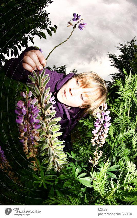 ABGEBROCHEN Farbfoto Außenaufnahme Blitzlichtaufnahme Natur Pflanze Himmel Wolken Wind Blume Sträucher Blüte Seeufer frech verrückt grün violett