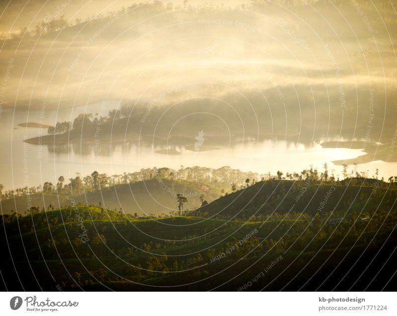 Golden sunrise in Sri Lanka Natur Landschaft Urwald Hügel Berge u. Gebirge Ferien & Urlaub & Reisen adam´s peak Asien blue dusk enchanting lovely fairy