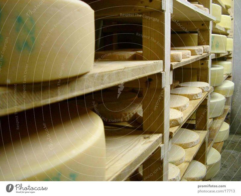 Käsekeller Gesundheit lecker Allgäu Käselager Allgäuer Käse Lebensmittel Milch Landwirtscaft Farbfoto Innenaufnahme Tag Kunstlicht