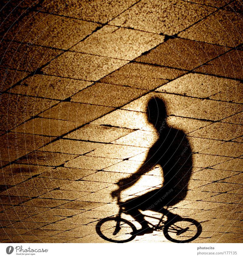 was ein torso.. Farbfoto Außenaufnahme Experiment abstrakt Strukturen & Formen Textfreiraum links Abend Licht Schatten Sonnenlicht Gegenlicht