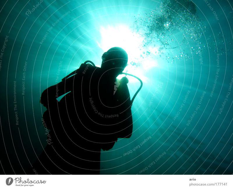 ... Farbfoto Unterwasseraufnahme Tag Gegenlicht Wassersport tauchen Sonnenlicht Meer blau