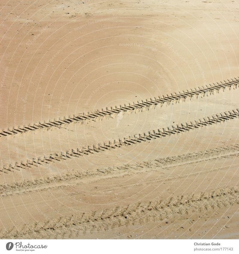 Deine Spuren im Sand... Sonne Meer Sommer Strand Ferien & Urlaub & Reisen gelb Wellen Küste Wege & Pfade Sonnenbad Reifen Reifenprofil Promenade Flut