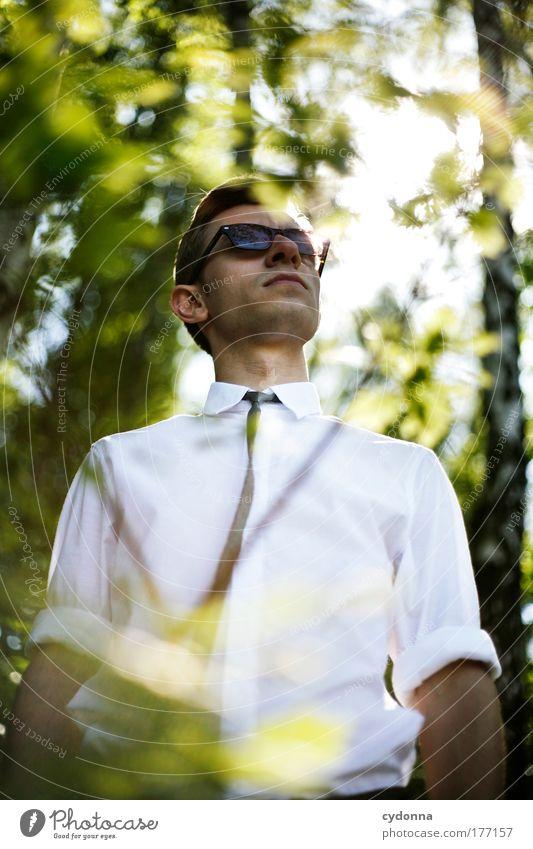 Buisnessmen Mensch Mann Natur Jugendliche schön Wald Leben Freiheit Gefühle Umwelt Stil träumen Erwachsene elegant Erfolg planen