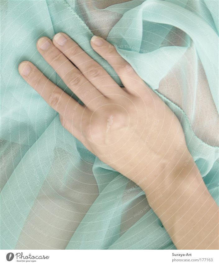 Soft Touch Mensch Hand Jugendliche schön ruhig Leben feminin Gefühle Haut Finger Lifestyle ästhetisch nah weich Sauberkeit