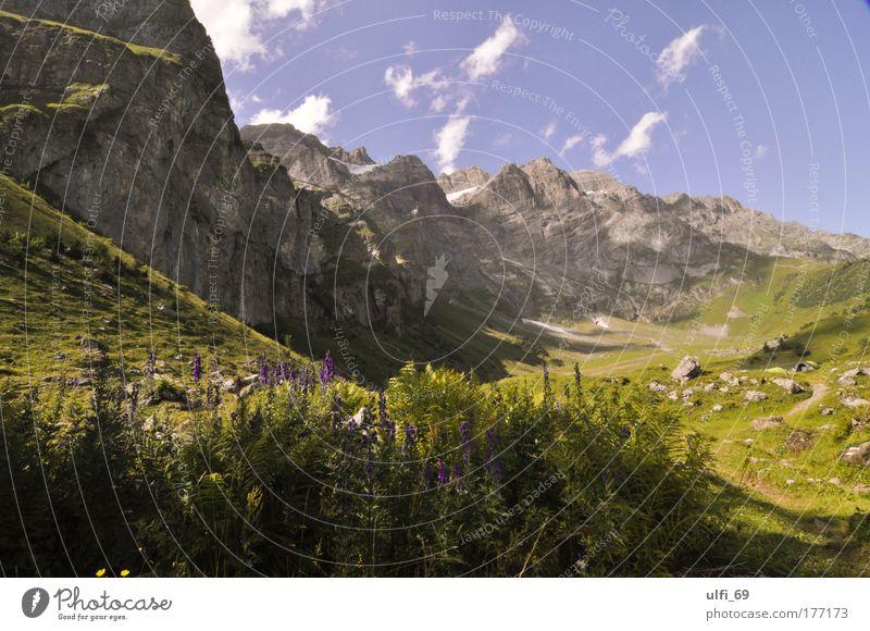 Schweizer Alpen Natur grün blau Sommer Ferien & Urlaub & Reisen Einsamkeit Berge u. Gebirge Landschaft Umwelt groß Tourismus Klima natürlich Gipfel entdecken