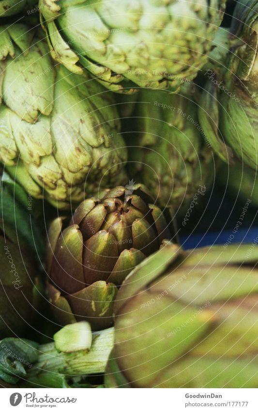 Artischocke grün Ernährung Lebensmittel frisch Gemüse Vegetarische Ernährung Artischocke