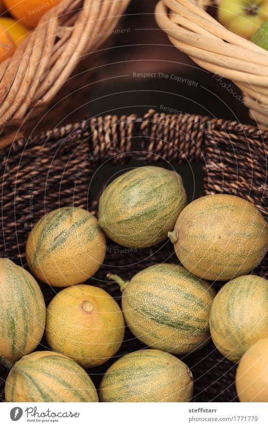Zitronenkalkhybride Lebensmittel Frucht Ernährung Vegetarische Ernährung Diät Gesundheit Gesunde Ernährung Wellness Pflanze Baum gelb gold grün Limone Zwitter