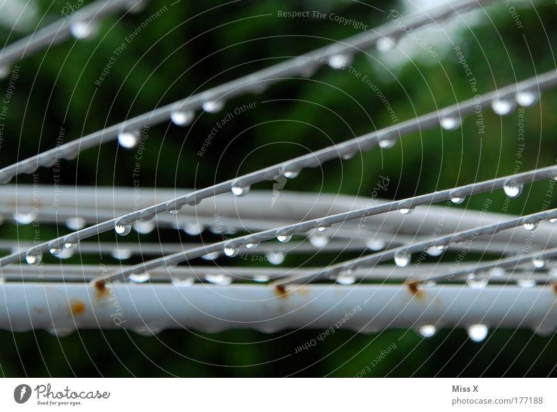 Die Hitze ist vorbei Natur dunkel kalt Garten Regen Stimmung nass Wassertropfen Klima Gewitter Klimawandel trocknen Wäscheleine schlechtes Wetter