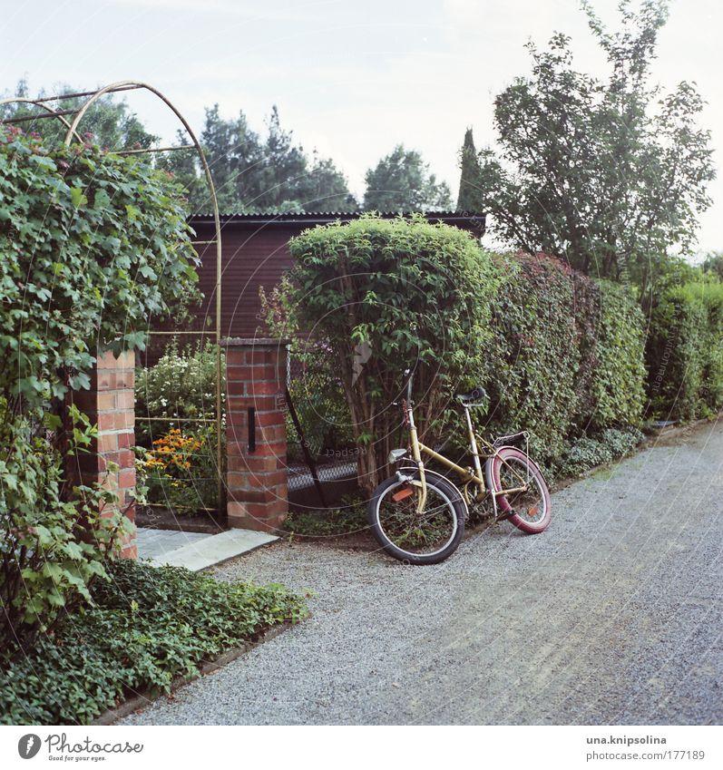 klapprad Natur Ferien & Urlaub & Reisen grün Pflanze Freude Erholung Garten natürlich Freizeit & Hobby Schönes Wetter Sträucher trist retro Fahrrad sparen
