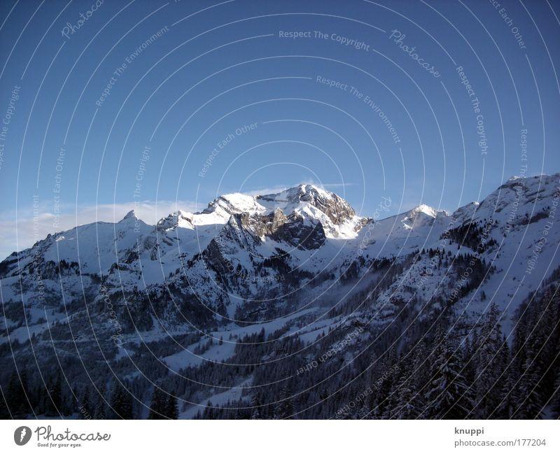 blau-weißer-wintertraum Himmel schön Baum Landschaft ruhig Winter Berge u. Gebirge kalt Schnee groß hoch Schönes Wetter ästhetisch Unendlichkeit