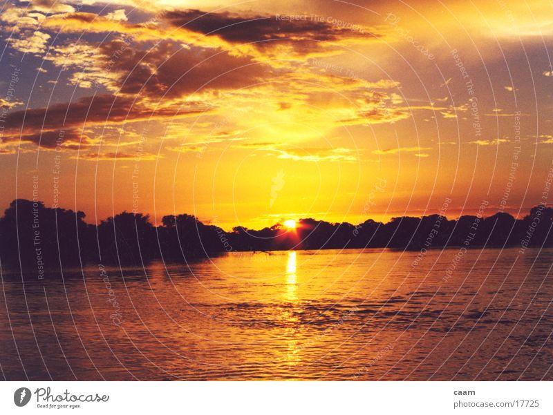 Apure Wasser Sonne Fluss Südamerika Venezuela