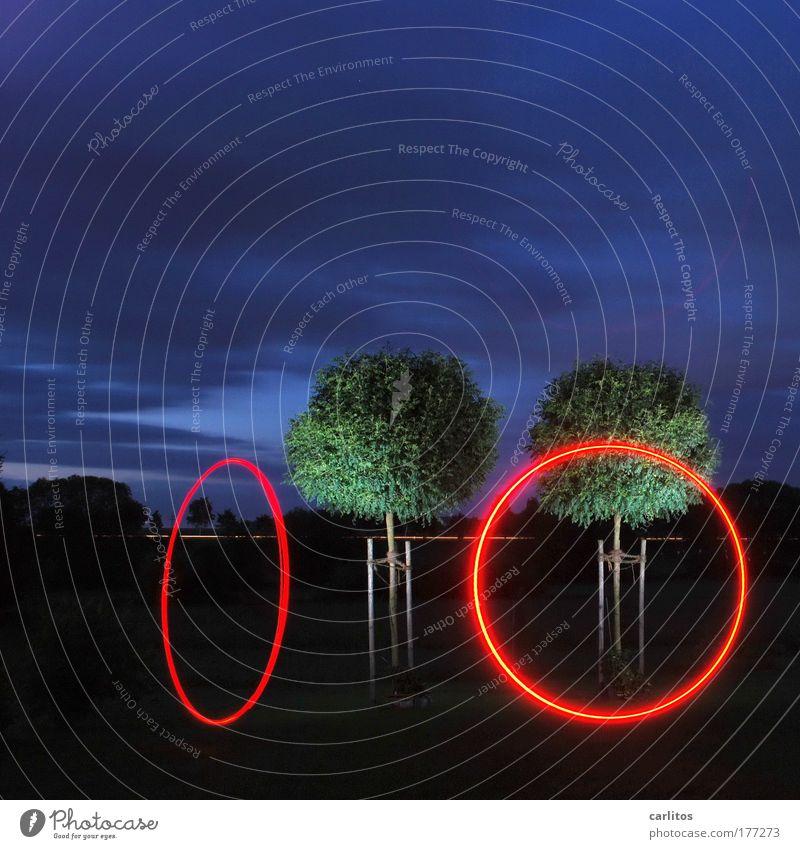 RING, RING Baum rot Freude ruhig Erholung Spielen Bewegung Zufriedenheit Kunst Geschwindigkeit Kreis Langzeitbelichtung ästhetisch Kugel Zeichen leuchten